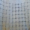 Plastic plant climbing mesh