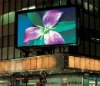 LED display from quality supplier