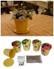 Biodegradable Plant Pot,Flower garden with seeds and grow medium(904004)