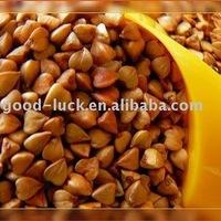 Roasted Buckwheat Groat
