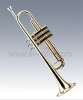 Brass Body,Gold Lacquered Trumpet,Nickel Silver Valves(TP8111G)