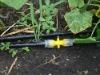 zfsj agricultura tuberia goteadora con trayecto laberinto
