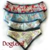 Pet bandana, Pet scarf