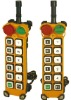 Industrial Remote Control F24-12S/D