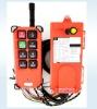 Wireless remote controller (21-E1B)