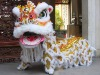 South Lion Dance Set with Lion Head, Collar, Quilt, Trousers and Shoes with Wool in White Color_Foshan Folk Art