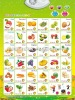 Educational Learning Wall Charts with Sound Portugal