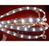Flexible LED Ribbon, waterproof led strip,smd led stirps