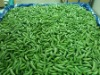 IQF FROZEN SUGAR SNAP PEAS