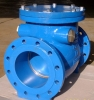 BS5153 Swing Type Check Valve