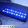 high power cree Aquarium light
