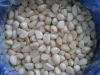 garlic in brine