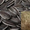 sunflower seeds kernels powder
