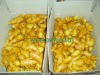 New Crop ginger packed in plastic box