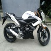 FAST RACING BIKE 250cc pocket bikes