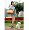 fashion pet tote bag suitable for lady and men
