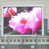 Top-p16 full color LED digital bill board