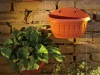 Wall mounted flower pot XT8007