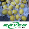 Tasty high quality Eureka Lemon
