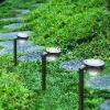 solar lights for garden