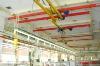 flexible double girder suspension crane