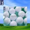 Well Design Floating Golf Ball