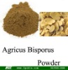 Agricus bisporus Powder