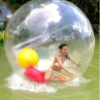 exciting inflatable water walking ball