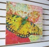 Beatiful Butterfly In Flight Stretched Bar Canvas Printing