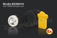 BXD6010 waterproof torch