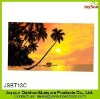 Vivid images 100% cotton velour reactive printing beach towel
