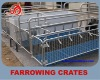 High quality galvanized pipe sow farrowing crate