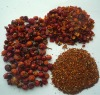 Healthy dried rosehip fruit, rosehip shell,rosehip teabag cut
