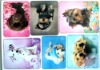 Fridge magnets-lovely dogs/flexible rubber magnets/pvc magnets