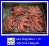 IQF Frozen Cooked Flower Octopus