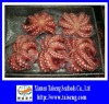 IQF Frozen Cooked Flower Octopus
