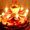 Luxury rotating music Blossoming Flower Birthday candle