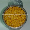 Wholesale canned food of sweet cron products