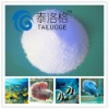 Ornamental Fish Sea Salt Kent sea salt