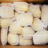 China fresh holland potato specifications supplier