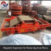 Rare Earth Permanent Magnetic Separator Series RCYD