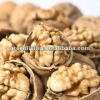 walnuts in shell or kernel have good quality and cheap price