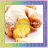 Best quality ginger for export