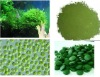 offer high quality chlorella powder / broken cell wall