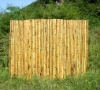 bam boo Fence