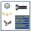 DIN84 Slotted Cheese Head Screws