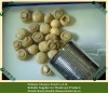 top quality canned white champignon mushroom