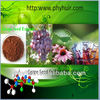 polyphenol 95% powder