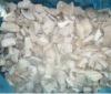 Frozen oyster mushrooms