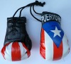 Mini Boxing Gloves, National Flag  Boxing Gloves  , National Flag Boxing Gloves  , Flag Boxing Gloves